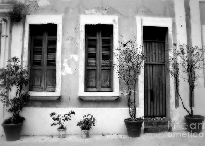 Door Greeting Card featuring the photograph San Juan Living 2 by Perry Webster