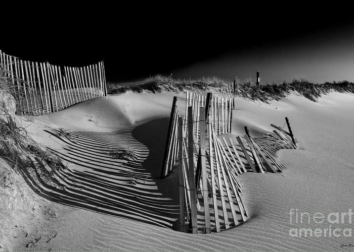 Beach Landscape Greeting Card featuring the photograph Sand Fence by Jim Dohms