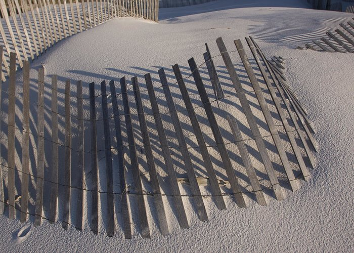 Day Greeting Card featuring the photograph Sand Fence On The Beach In Destin by Marc Moritsch