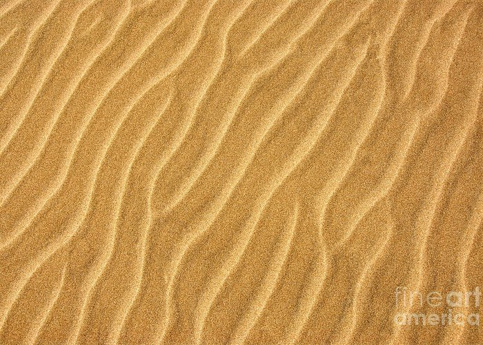 Sand Greeting Card featuring the photograph Sand Ripples Abstract by Elena Elisseeva