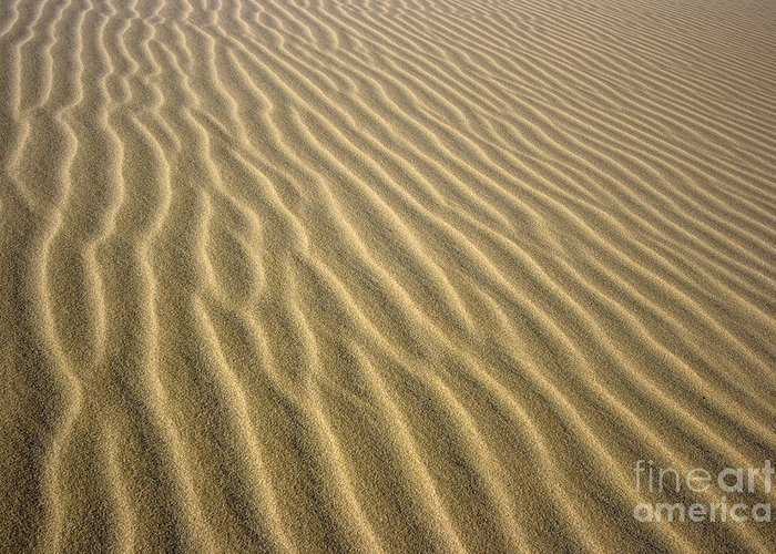 Texture Greeting Card featuring the photograph Sandhills by MotHaiBaPhoto Prints
