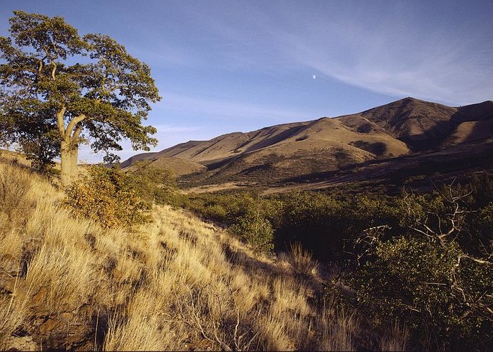 North America Greeting Card featuring the photograph Scenic View Of The Yakima Valley by Sisse Brimberg