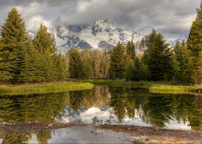 Grand Tetons Greeting Card featuring the photograph Schwabacher's Landing by Charles Warren