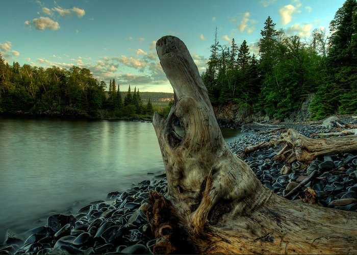 Canada Greeting Card featuring the photograph Sea Monster by Jakub Sisak