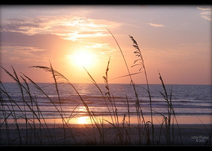 Sea Oats Greeting Card featuring the photograph Sea Oats Beach Sunrise by Mike Moore