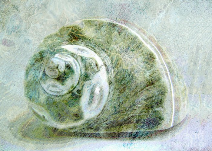 Sea Shell Greeting Card featuring the mixed media Sea Shell I by Ann Powell