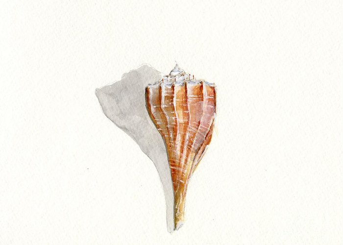 Sea Shell Greeting Card featuring the painting Sea Shell Watercolor by Sheryl Heatherly Hawkins