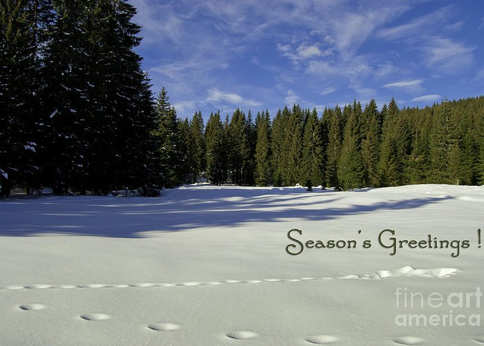 Winter Greeting Card featuring the photograph Season's Greetings Austria Europe by Sabine Jacobs
