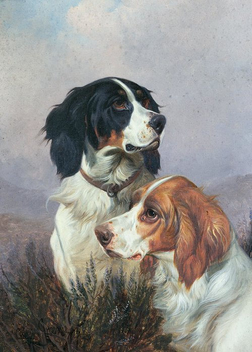 Dogs Greeting Card featuring the painting Setters On A Moor by Colin Graeme