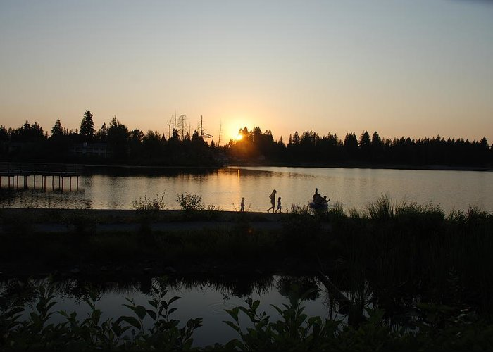 Summer Greeting Card featuring the photograph Setting Sun by Michael Merry