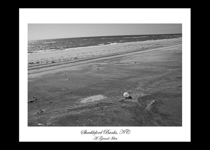 Shackleford Greeting Card featuring the photograph Shackleford Banks A Grand Idea by Betsy Knapp