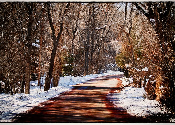Road Greeting Card featuring the photograph Shadowy Path by Lisa Spencer