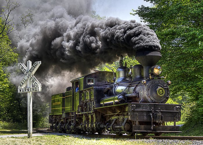 Locomotive cass Scenic Railroad west Virginia Scenic Rural Lumber Timber Cass steam Engines steam Locomotive Railroad Railway Shay Greeting Card featuring the photograph Shay Number Five by Tom Steele