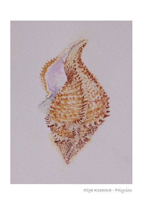 Shell Greeting Card featuring the painting Shell by Olga Kosareva-Polyviou