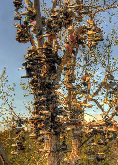 Shoes Greeting Card featuring the photograph Shoe Tree by Lori Kimbel