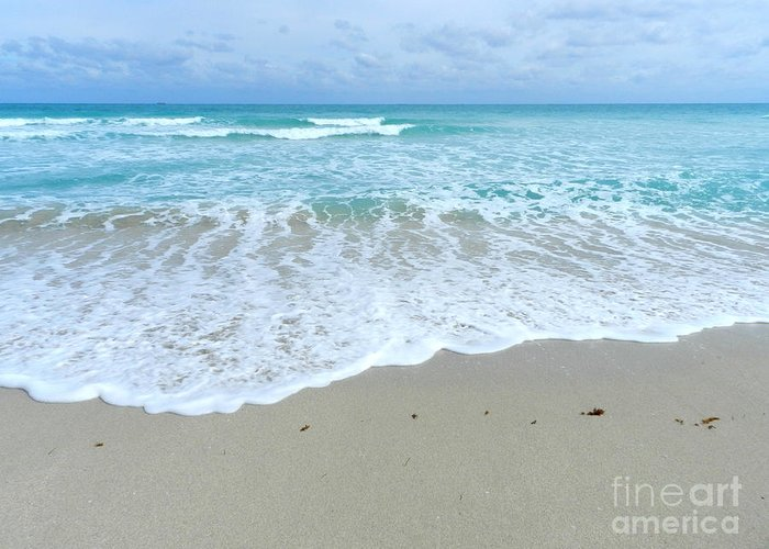 Miami Beach Greeting Card featuring the photograph Shores Of Miamibeach by Tammy Chesney