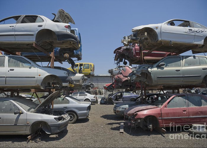 Abandoned Greeting Card featuring the photograph Shot Of Junkyard Cars by Noam Armonn