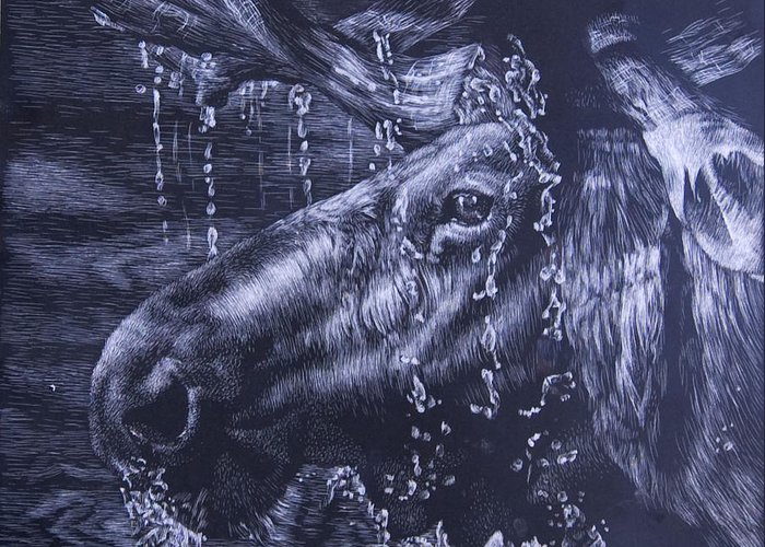 Scratchboard Greeting Card featuring the mixed media Shower by Joanna Gates