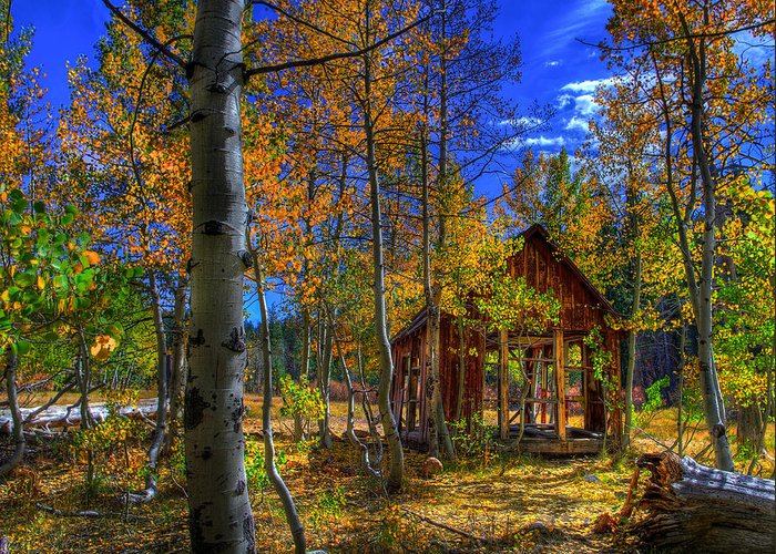 Americana Greeting Card featuring the photograph Sierra Nevada Fall Colors Barn by Scott McGuire