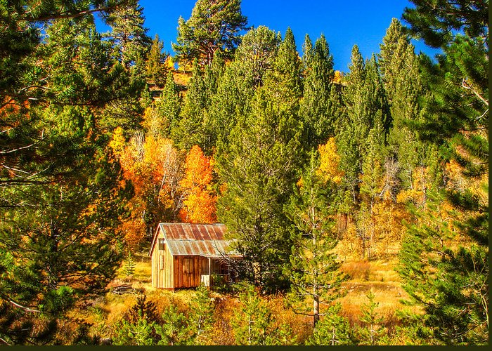 Rustic Americana Barn Greeting Card featuring the photograph Sierra Nevada Rustic Americana Barn With Aspen Fall Color by Scott McGuire