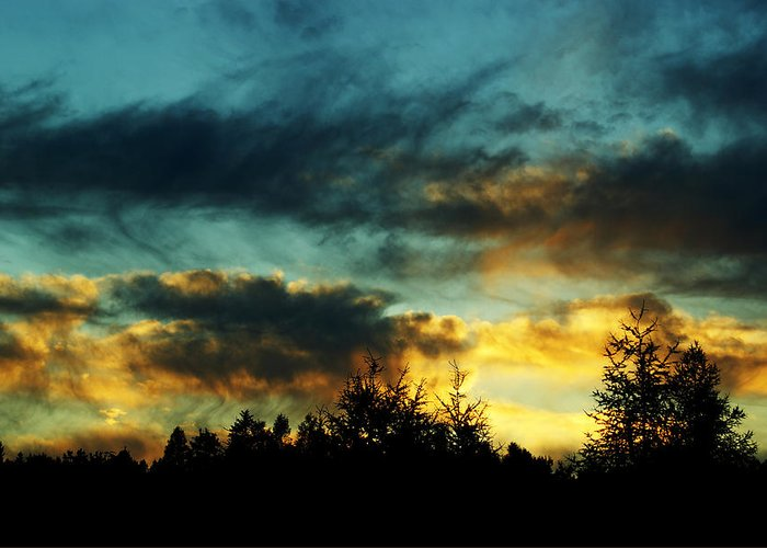Sunset Greeting Card featuring the photograph Sky Attitude by Aimelle
