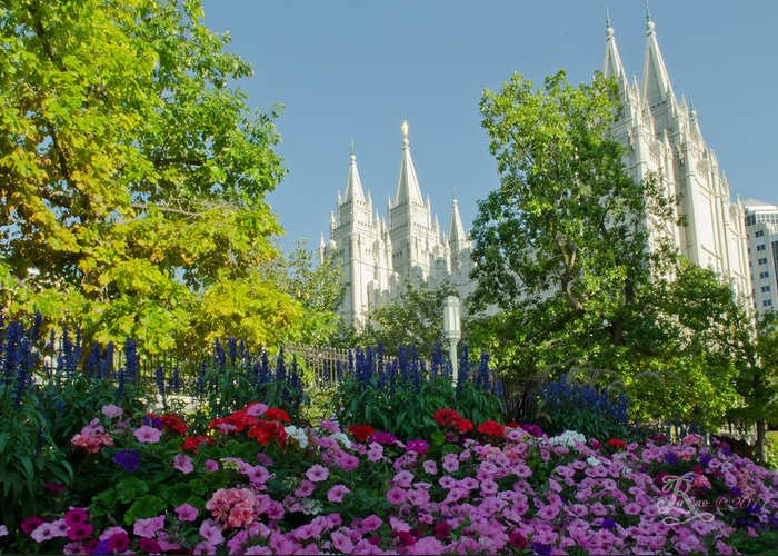 Temple Greeting Card featuring the photograph Slc Temple Flowers by La Rae Roberts