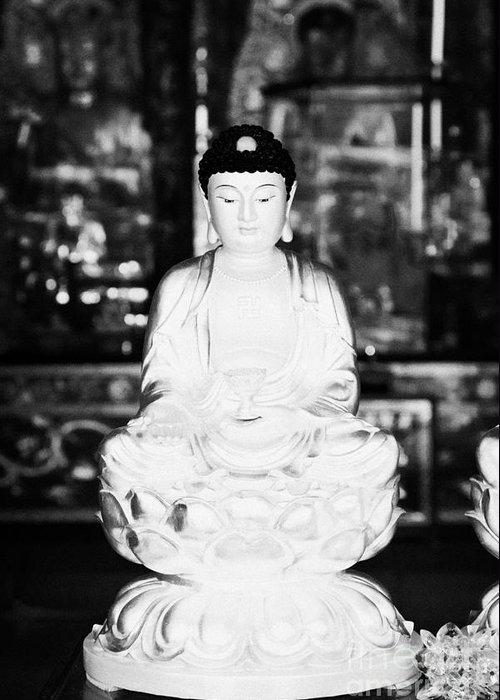 Monastery Greeting Card featuring the photograph Small Golden Buddha Statue In Monastery Of Ten Thousand Buddhas Sha Tin New Territories Hong Kong by Joe Fox