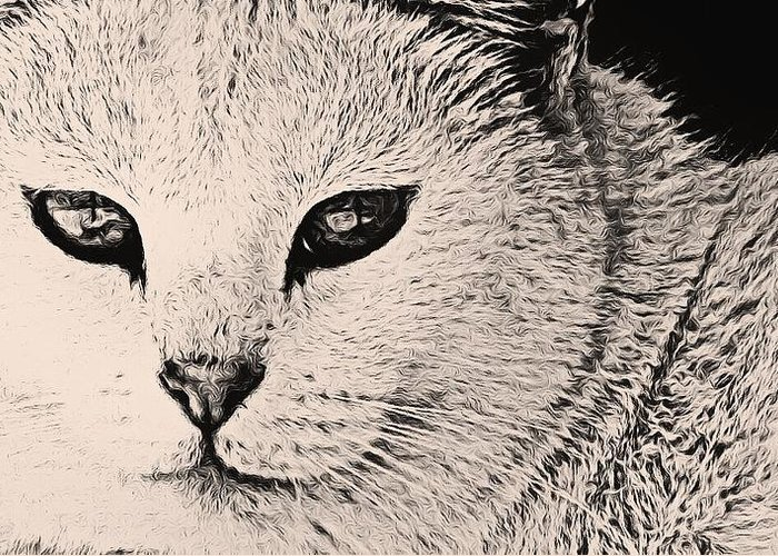 Cats Greeting Card featuring the photograph Smirk by Yvette Christine