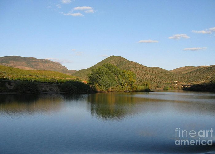 Nature Greeting Card featuring the photograph Smooth Sailing On The Douro by Arlene Carmel