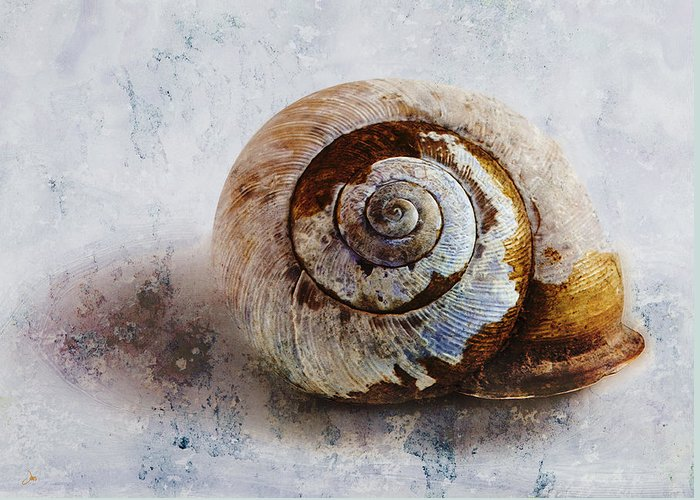 Ron Jones Greeting Card featuring the digital art Snail Shell by Ron Jones