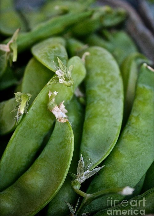 Food Greeting Card featuring the photograph Snap Peas Please by Susan Herber