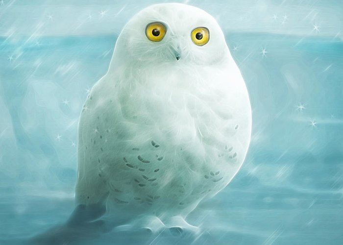 Owl Greeting Card featuring the digital art Snowball by Silvio Schoisswohl