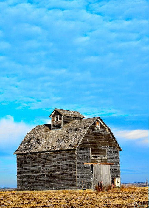 Nebraska Barn Greeting Card featuring the photograph Solitude In The Country No.2 by Christine Belt