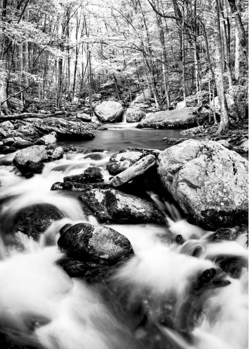 Beautiful Greeting Card featuring the photograph Soothing by Darren Fisher