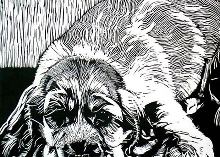 Graphic Greeting Card featuring the relief Spaniel by Sabrina McGowens