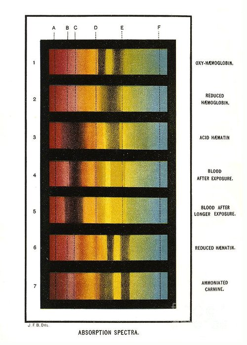 Science Greeting Card featuring the photograph Spectra Chart, Blood Samples, 1894 by Science Source