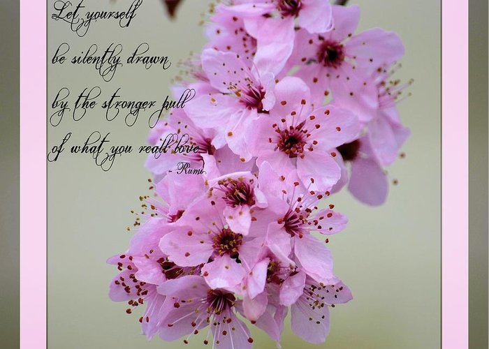 Rumi Quote Greeting Card featuring the photograph Spring Flowering Tree Inspirational Rumi Floral by P S