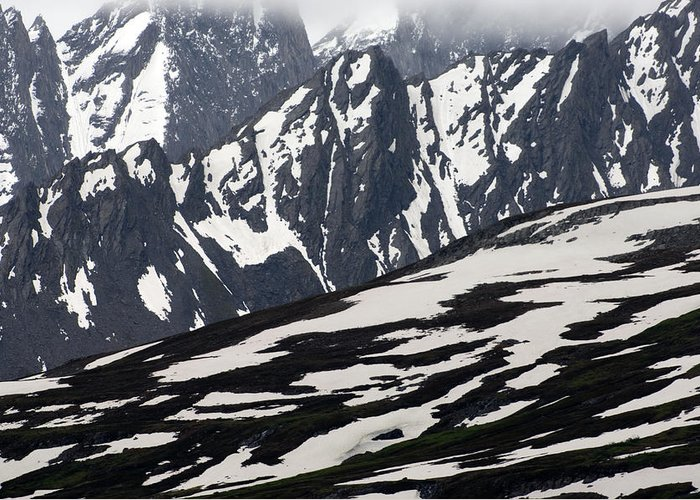 Nobody Greeting Card featuring the photograph Spring In Alaska Mountains by Michael S. Quinton