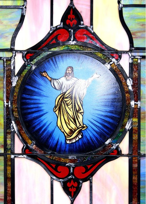 Stained Glass Greeting Card featuring the photograph Stained Glass by Travis Truelove