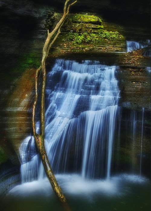 Waterfall Greeting Card featuring the photograph Standing In Motion by Evelina Kremsdorf