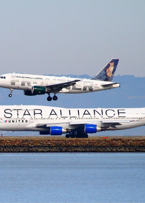 Airplane Greeting Card featuring the photograph Star Alliance Airlines And Frontier Airlines Jet Airplanes At San Francisco International Airport by Wingsdomain Art and Photography
