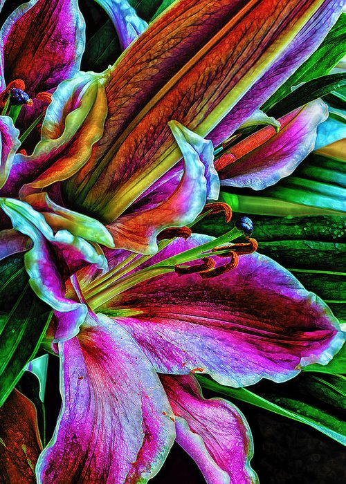 Flowers Greeting Card featuring the photograph Stargazer Lilies Up Close And Personal by Bill Tiepelman