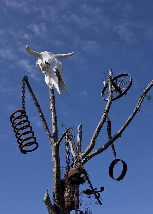 Cow Greeting Card featuring the photograph Steer Skull In Tree by Garry Gay