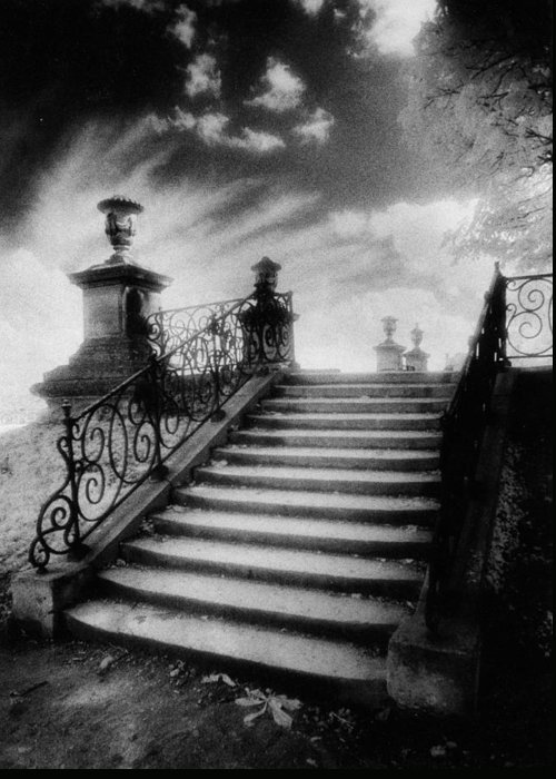 French Architecture; Outdoors; Staircase; Balustrade Greeting Card featuring the photograph Steps At Chateau Vieux by Simon Marsden