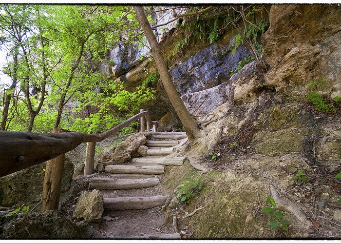 Hamilton Pool Greeting Card featuring the photograph Steps To The Cave by Lisa Spencer