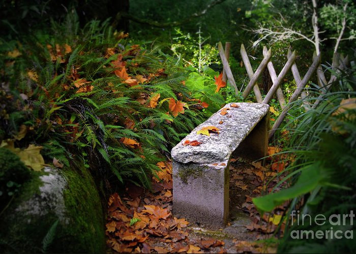 Autumn Greeting Card featuring the photograph Stone Bench by Carlos Caetano
