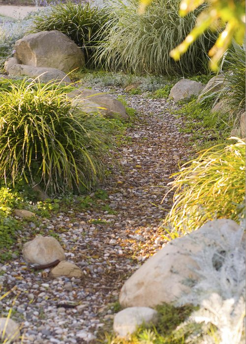 Usa Greeting Card featuring the photograph Stone Path Through Garden by James Forte