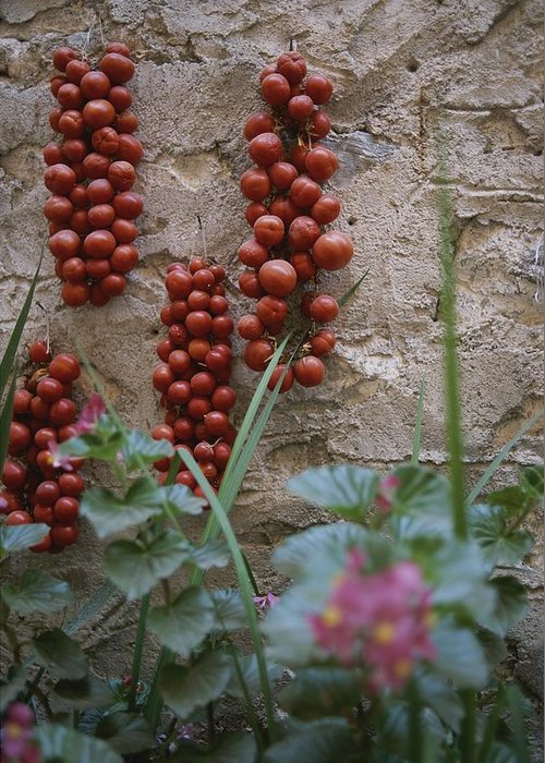 Europe Greeting Card featuring the photograph Strings Of Tomatoes Dry On A Wall by Tino Soriano
