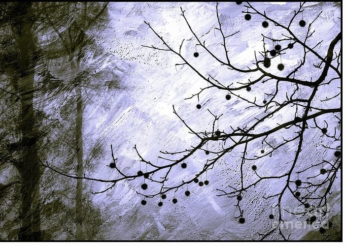 Snow Greeting Card featuring the photograph Sudden Snowstorm by Judi Bagwell