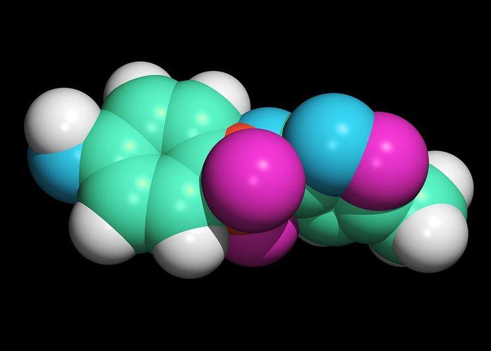 Sulfamethoxazole Greeting Card featuring the photograph Sulfamethoxazole Molecule by Dr Tim Evans